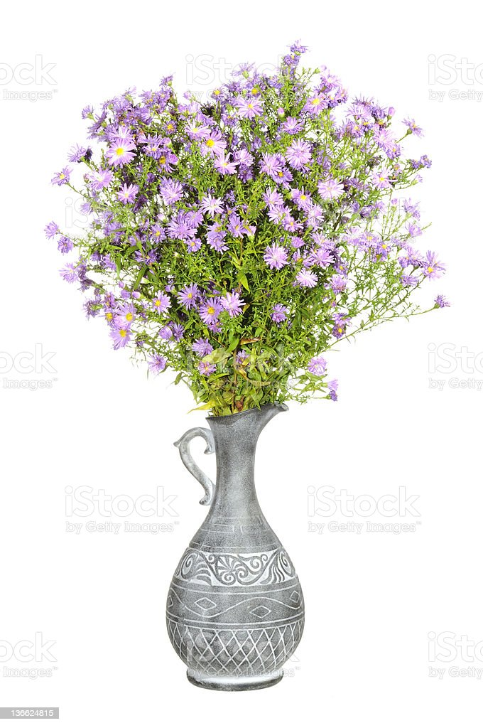 Bouquet of Pink Aster Flowers in Antique Vase royalty-free stock photo