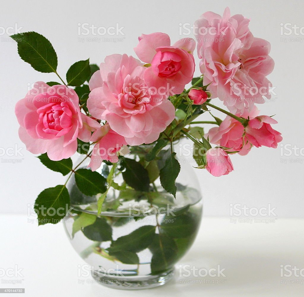 Bouquet of pink roses in a vase. Still life with roses. stock photo