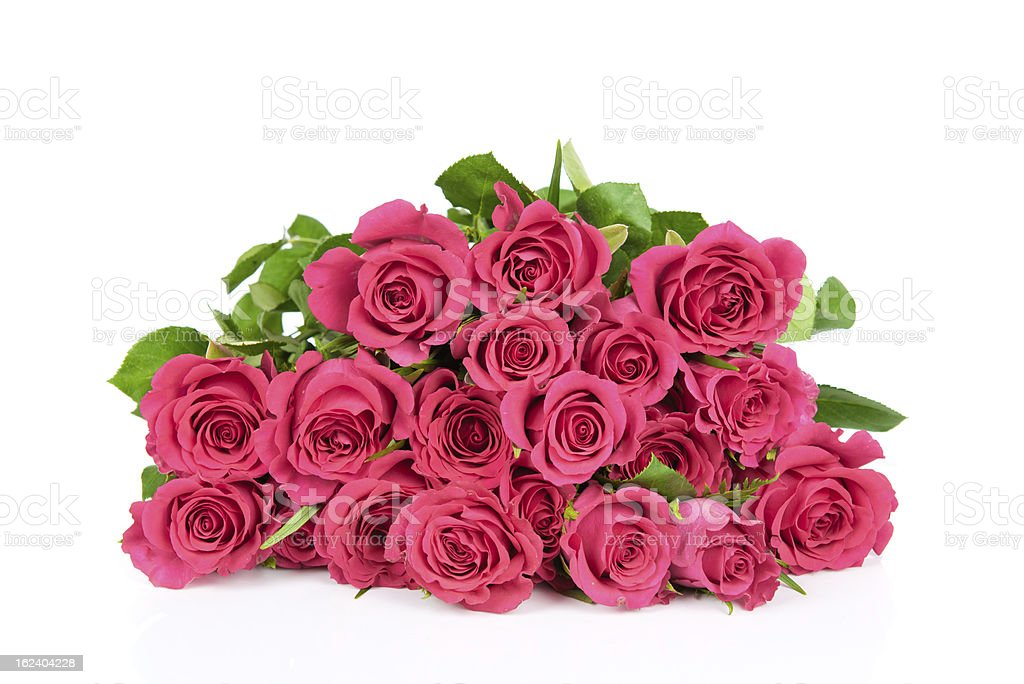 Bouquet of pink roses royalty-free stock photo
