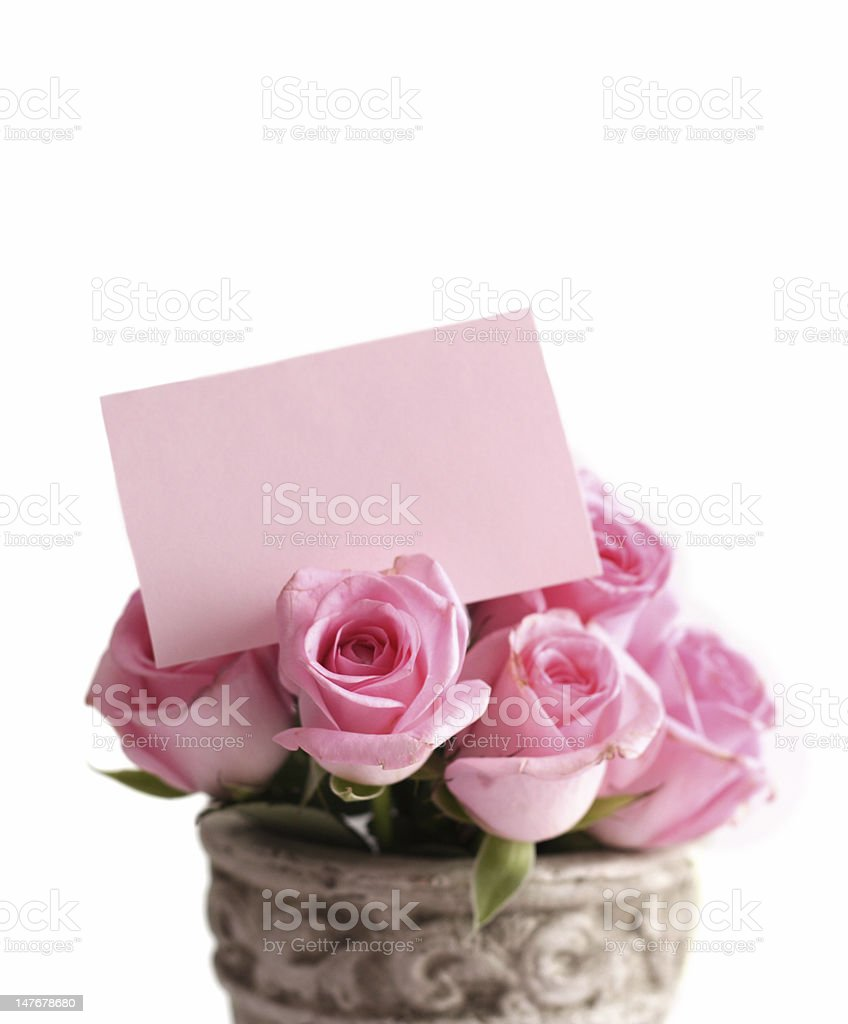 bouquet of pink roses with a blank gift tag stock photo