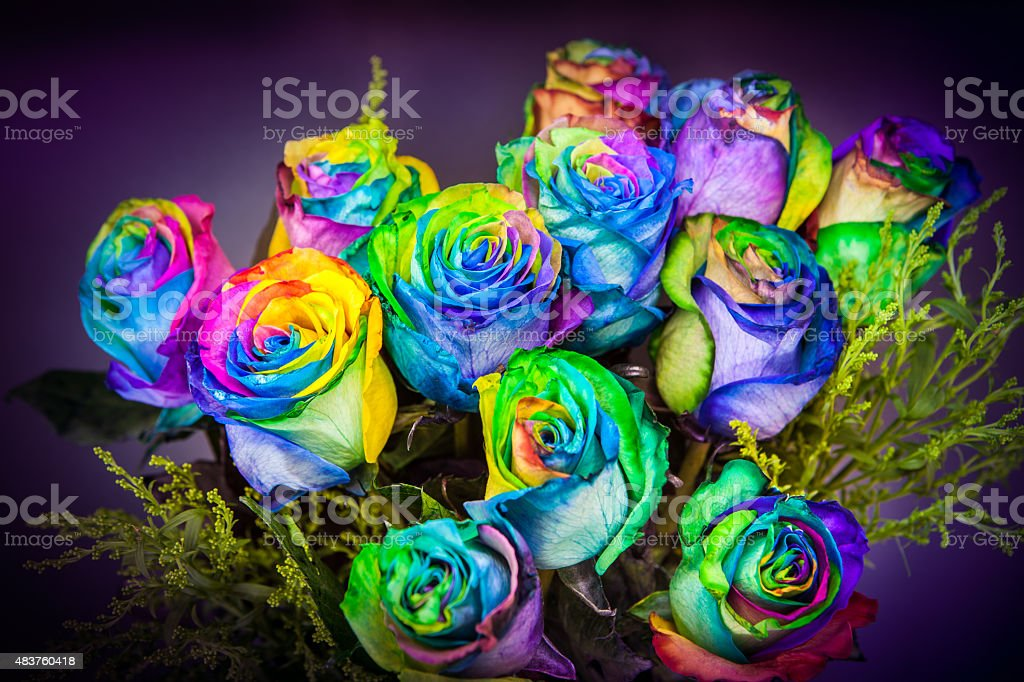 Bouquet Of Rainbow Dyed Roses royalty-free stock photo
