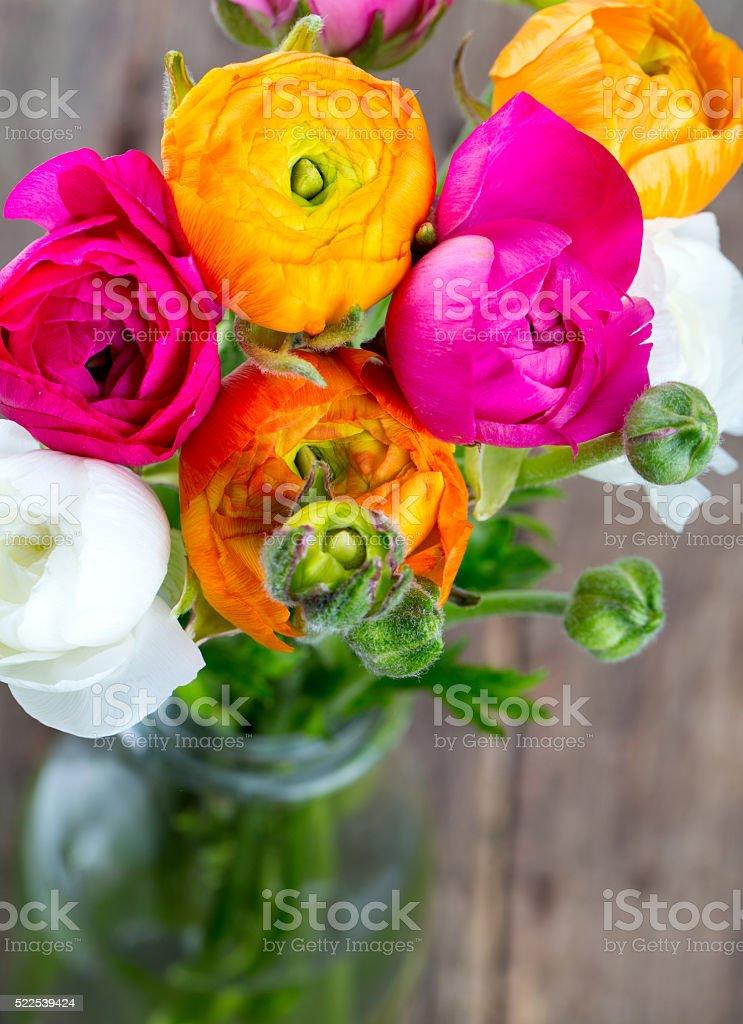 bouquet of ranunculus flowers stock photo