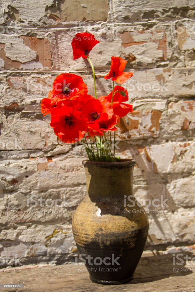 Bouquet of red poppies in clay jug on wooden table against old brick wall stock photo