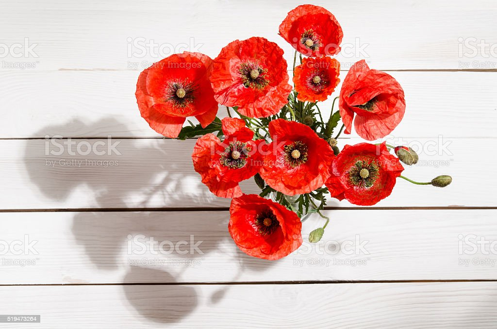 Bouquet of red poppies in glass vase stock photo