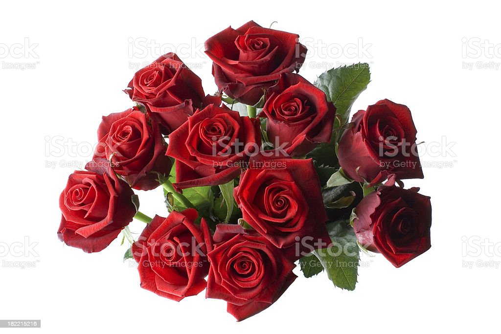 Bouquet of red roses royalty-free stock photo