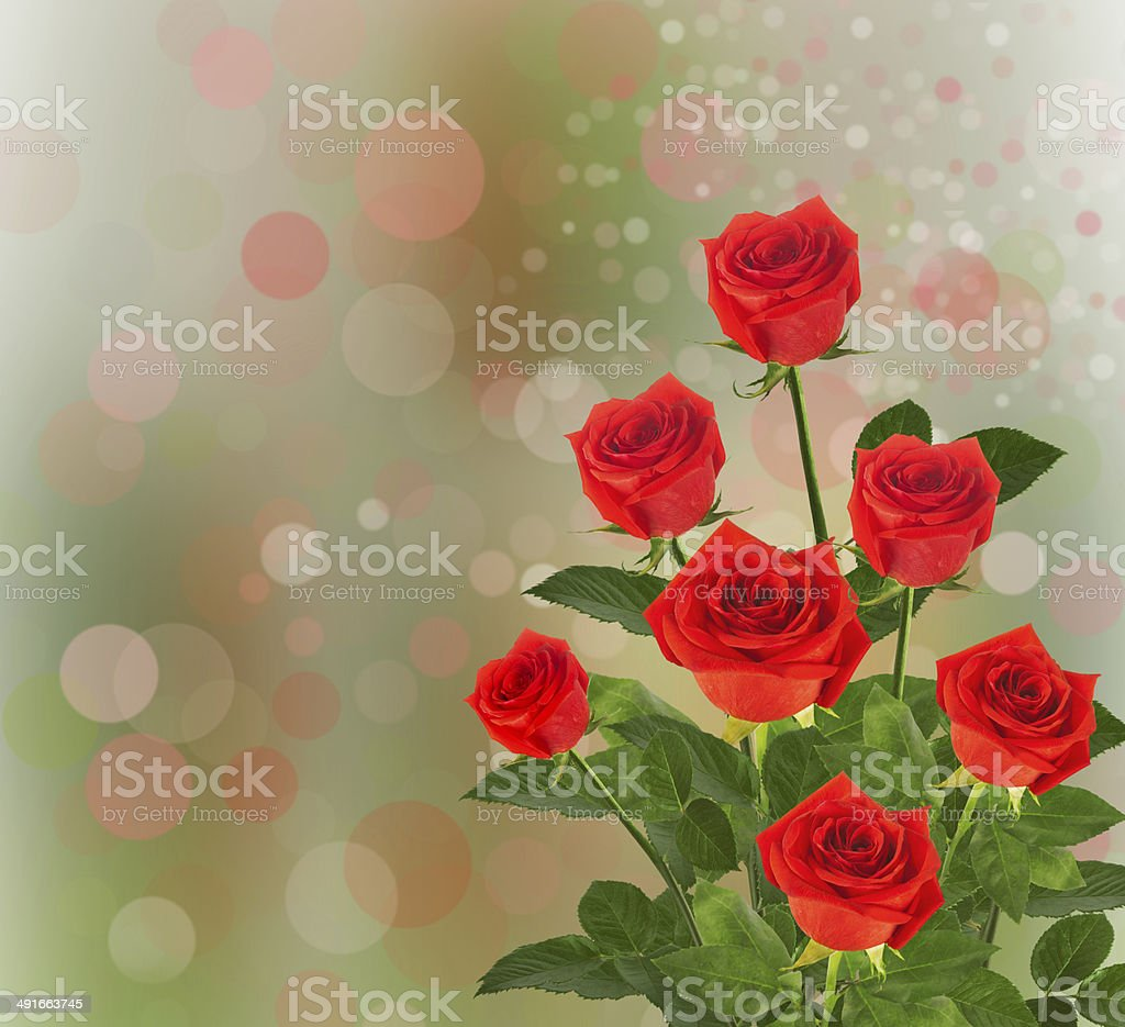 Bouquet of red roses with green leaves on abstract background stock photo