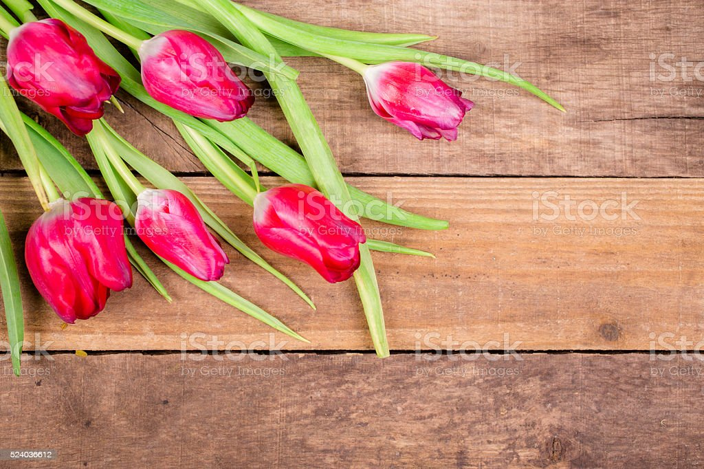Bouquet of red, spring tulips on rustic wood background. stock photo