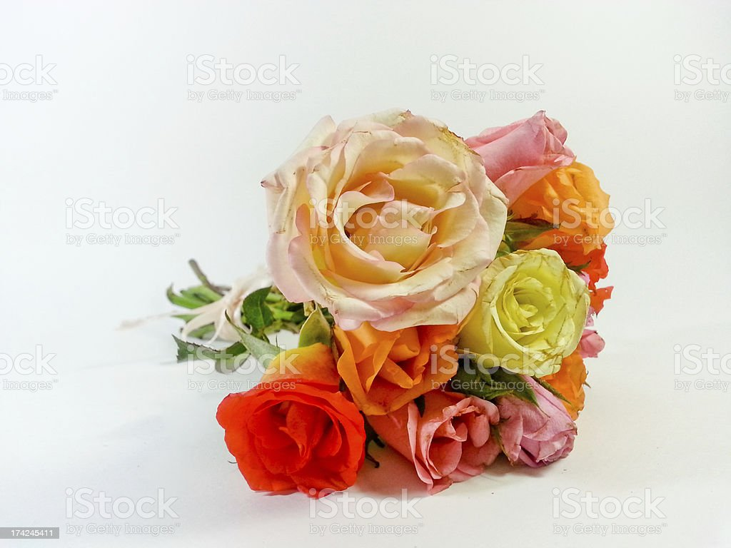 bouquet of roses isolated on white background royalty-free stock photo