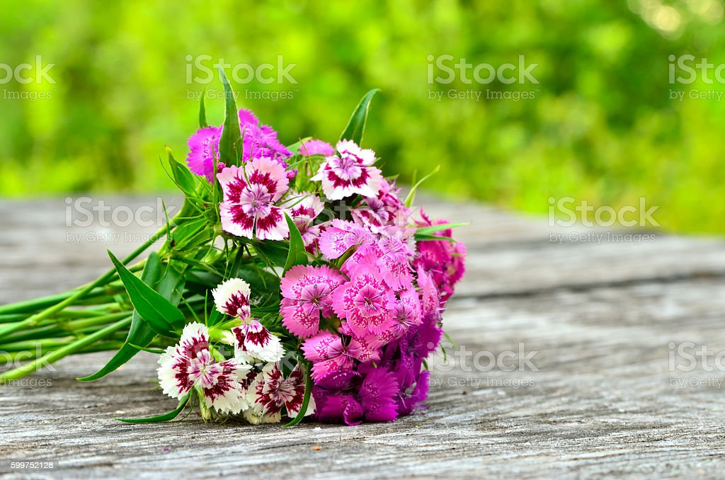 Bouquet of small carnations on a wooden background stock photo