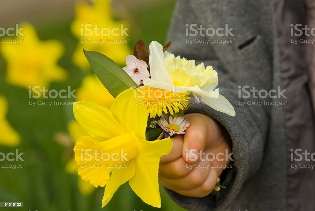 Bouquet of spring flowers for my mom royalty-free stock photo