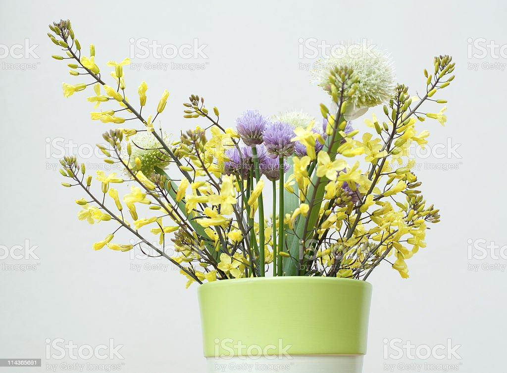 Bouquet of Spring Herb royalty-free stock photo