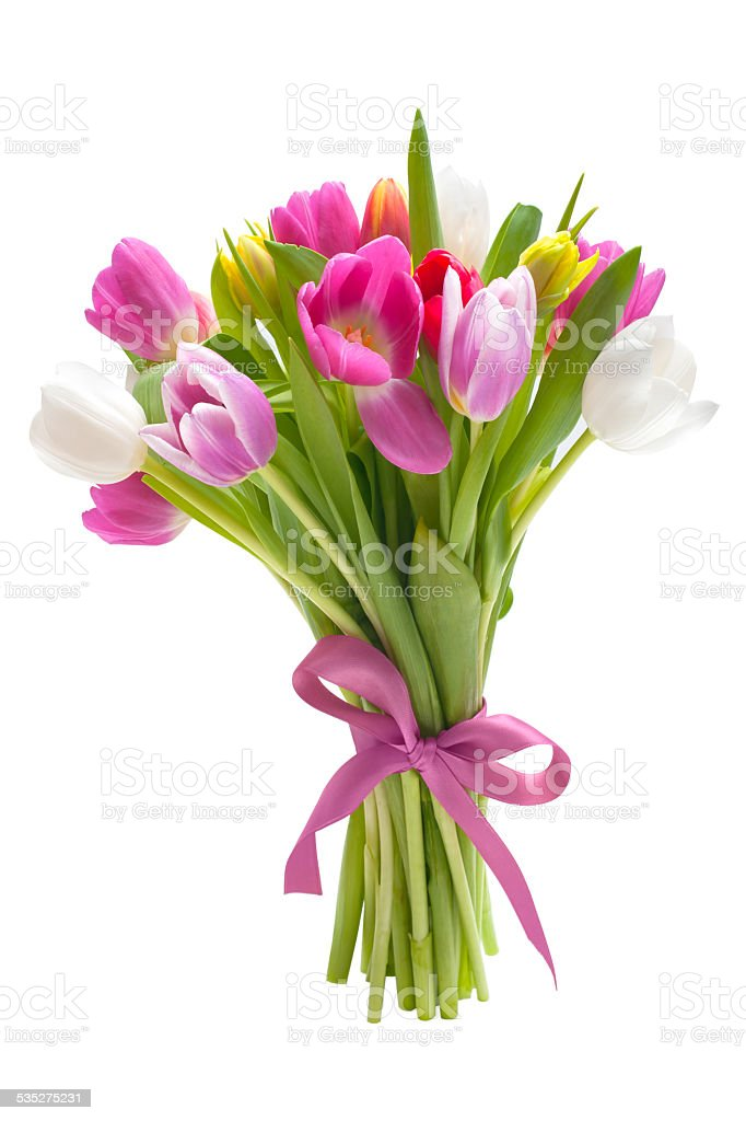 Bouquet of spring tulips flowers stock photo