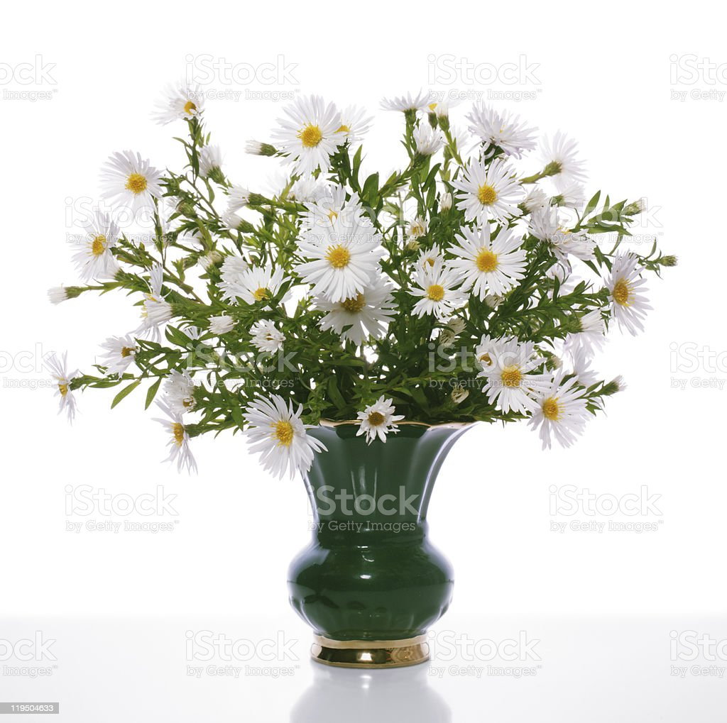 Bouquet of the chrysanthemums royalty-free stock photo