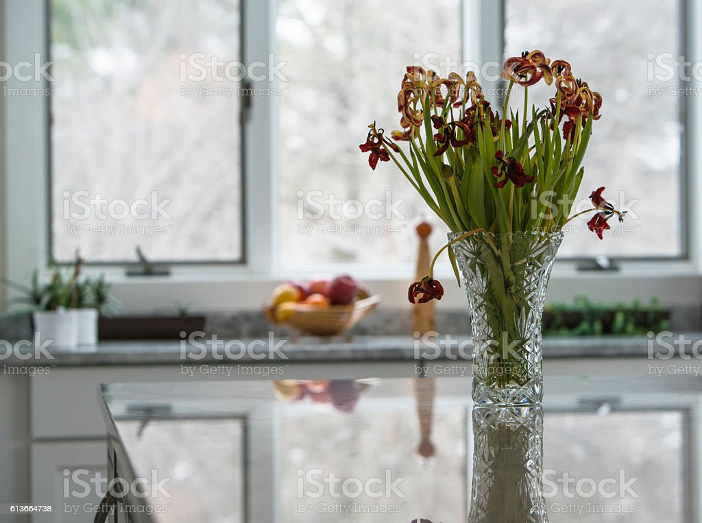 Bouquet of the faded tulips in the vase stock photo