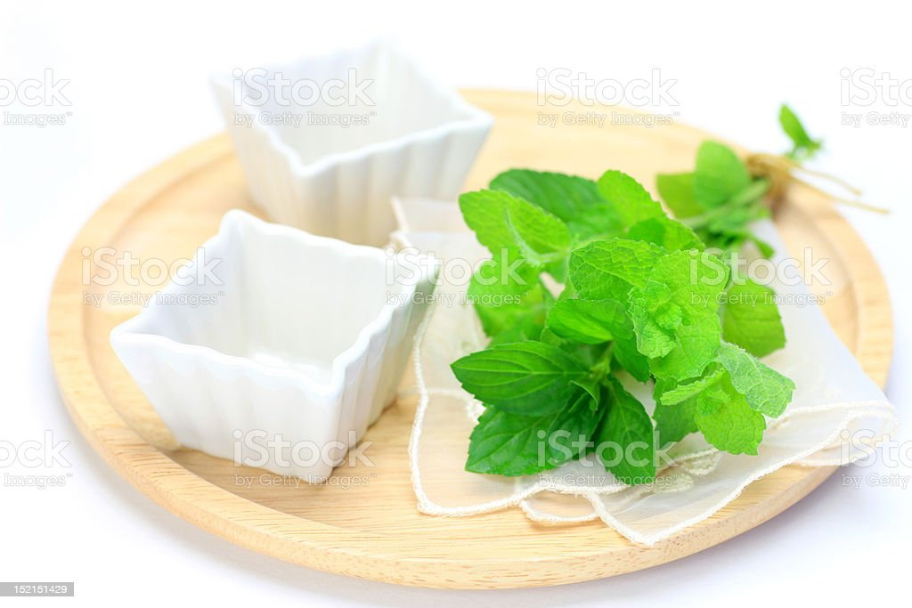 bouquet of the mint royalty-free stock photo
