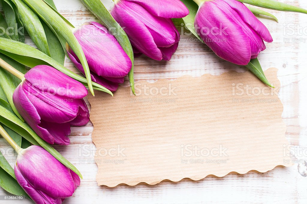 bouquet of tulips and an empty paper card stock photo
