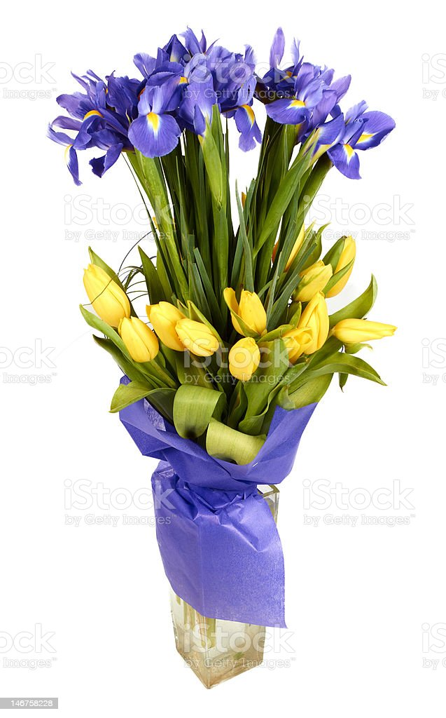 Bouquet of tulips and  irises royalty-free stock photo