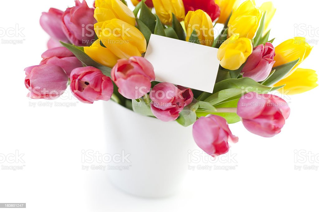 Bouquet of tulips isolated on white with blank card royalty-free stock photo