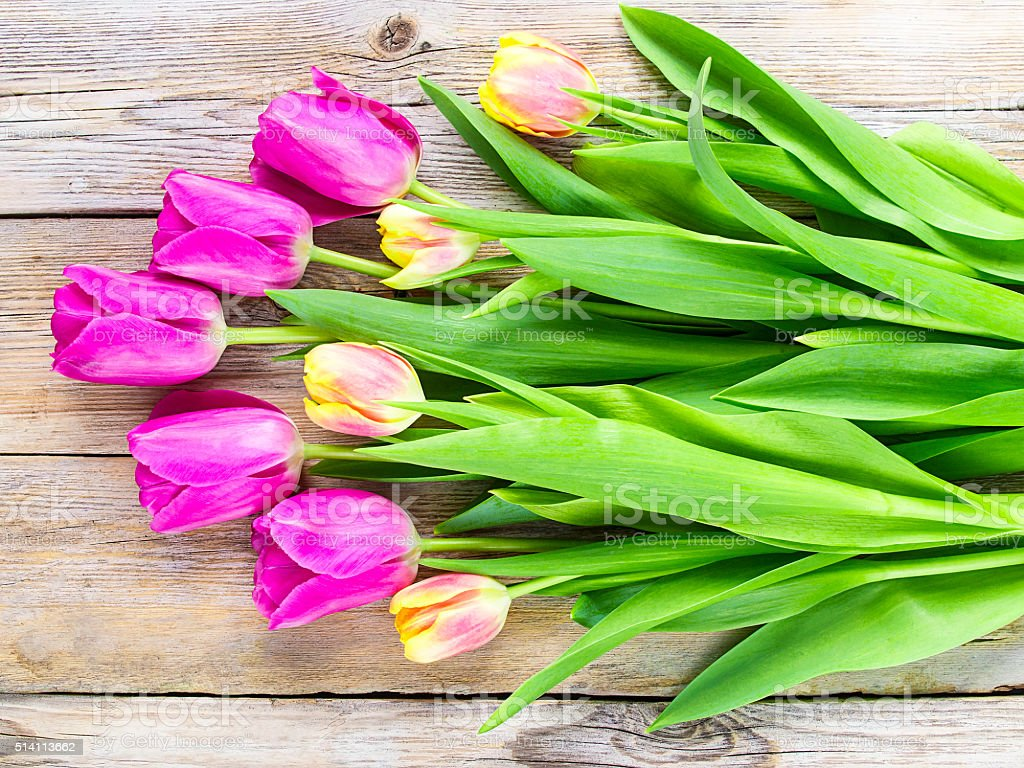 Bouquet of tulips on a wooden background. stock photo