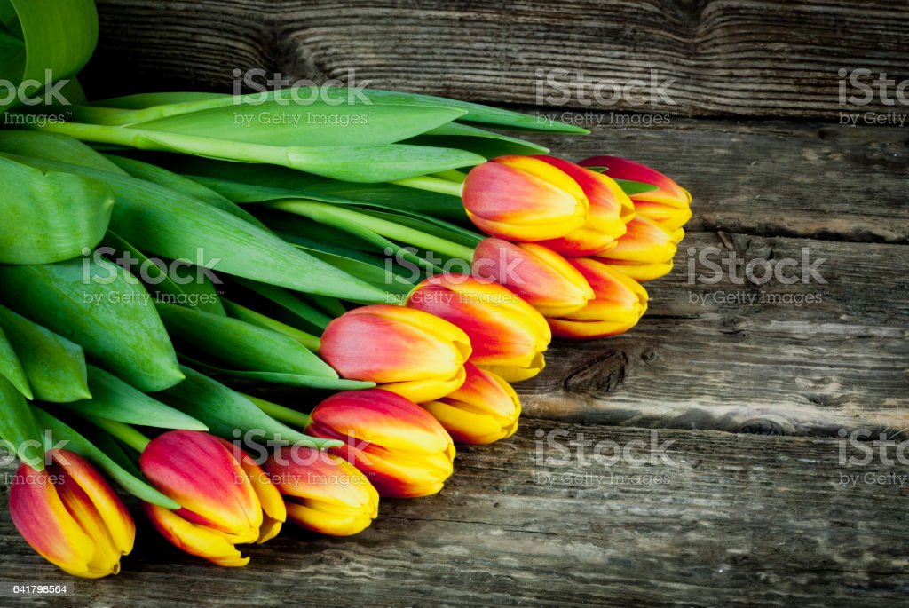 Bouquet of tulips on a wooden background stock photo