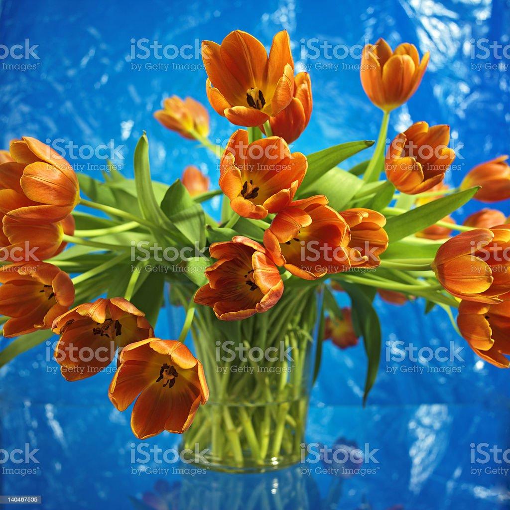 bouquet of vibrant orange tulips royalty-free stock photo