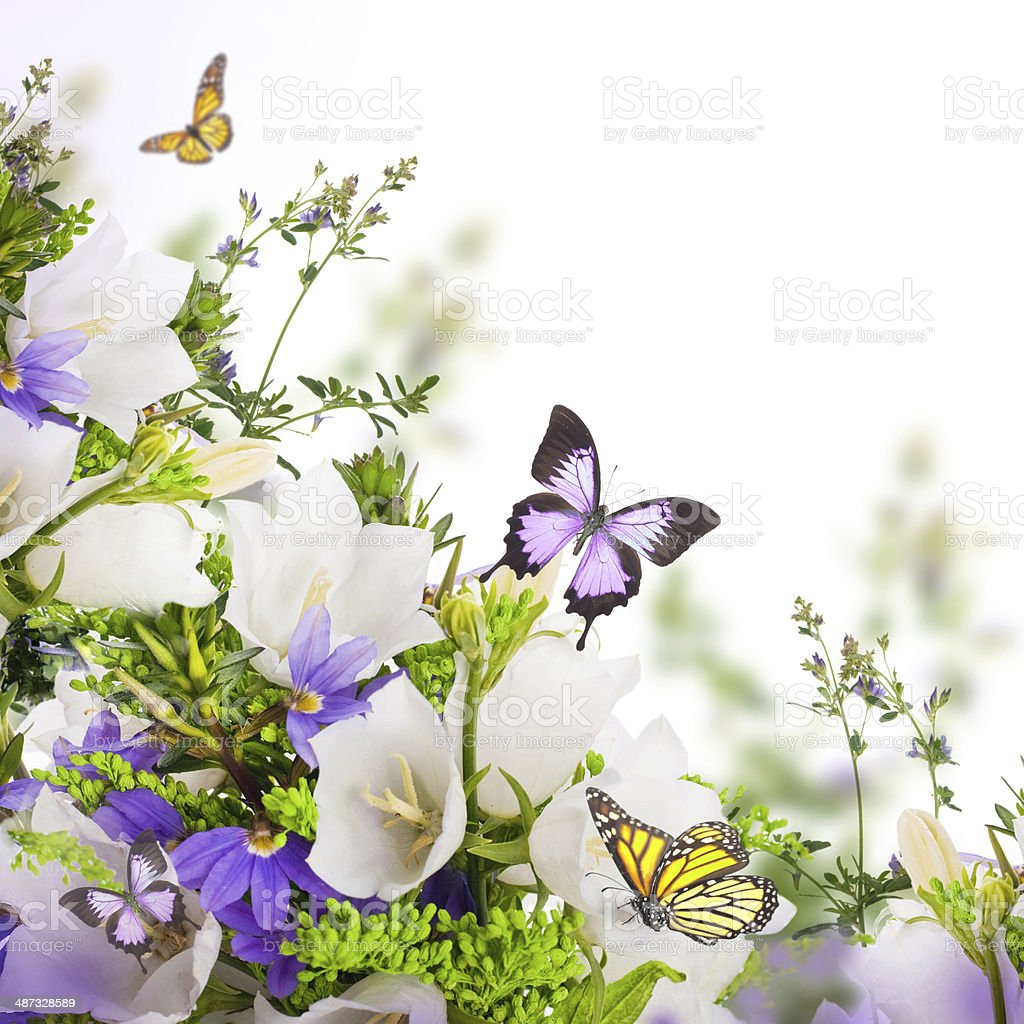 Bouquet of white and blue bells on a white background royalty-free stock photo