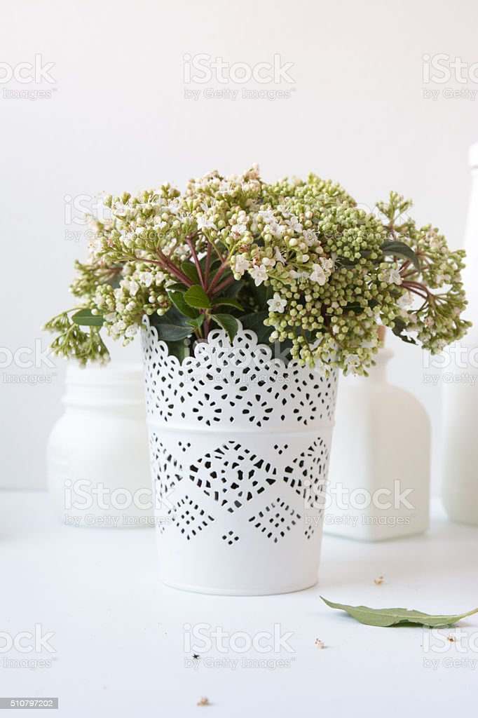 bouquet of white flowers in vase stock photo