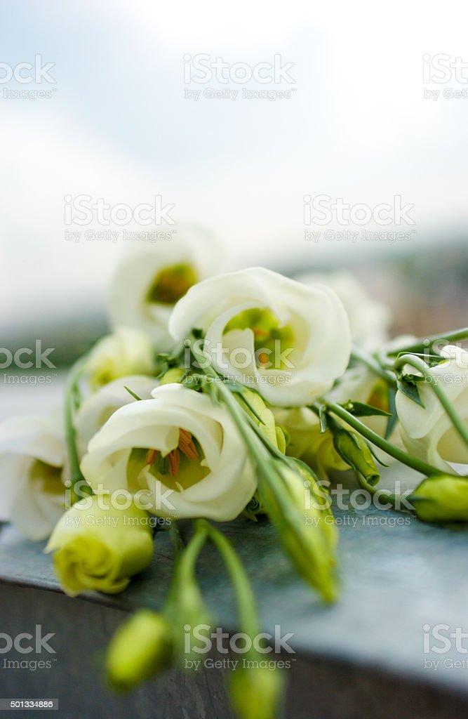 Bouquet of white flowers royalty-free stock photo