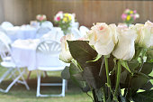 Bouquet of White Long Stem Roses in an Outdoor Setting