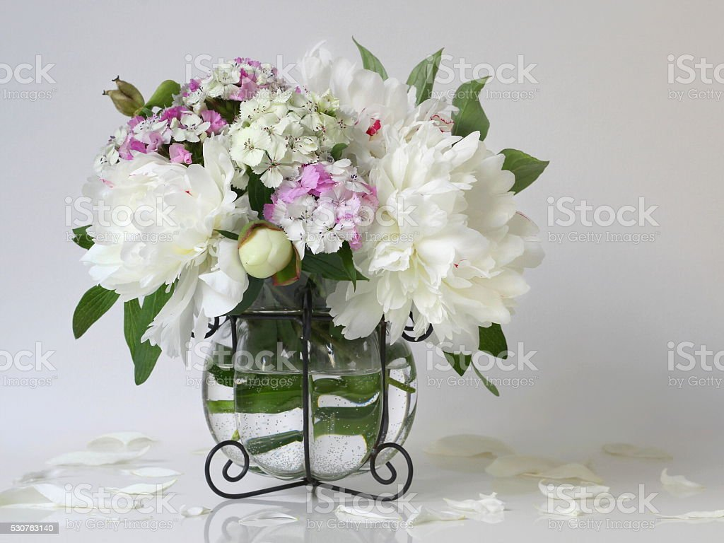 Bouquet of white peony flowers in vase. Floral home decoration. stock photo