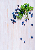Bouquet of wild blueberry on the wooden table