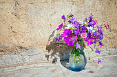 Bouquet of wild flowers - bluebells, daisies, clover