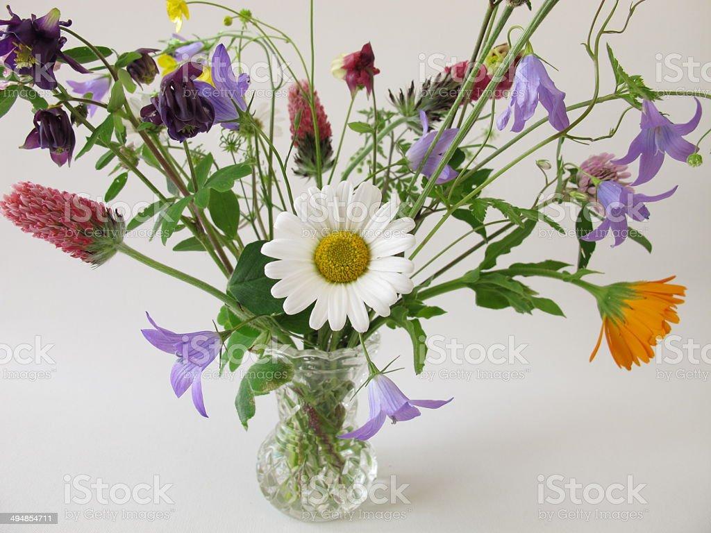 Bouquet of wild flowers stock photo