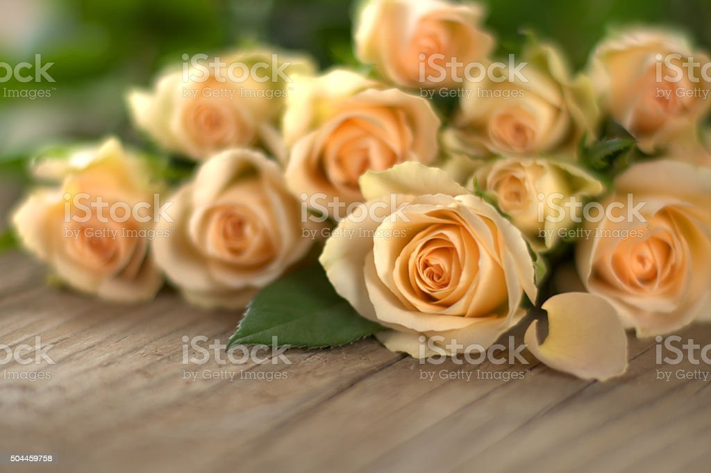 Bouquet of yellow roses on wooden boards stock photo