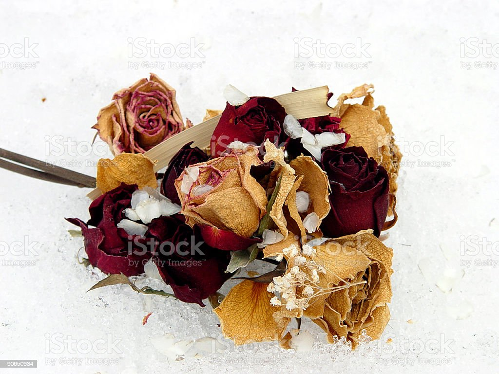 Bouquet on Ice royalty-free stock photo