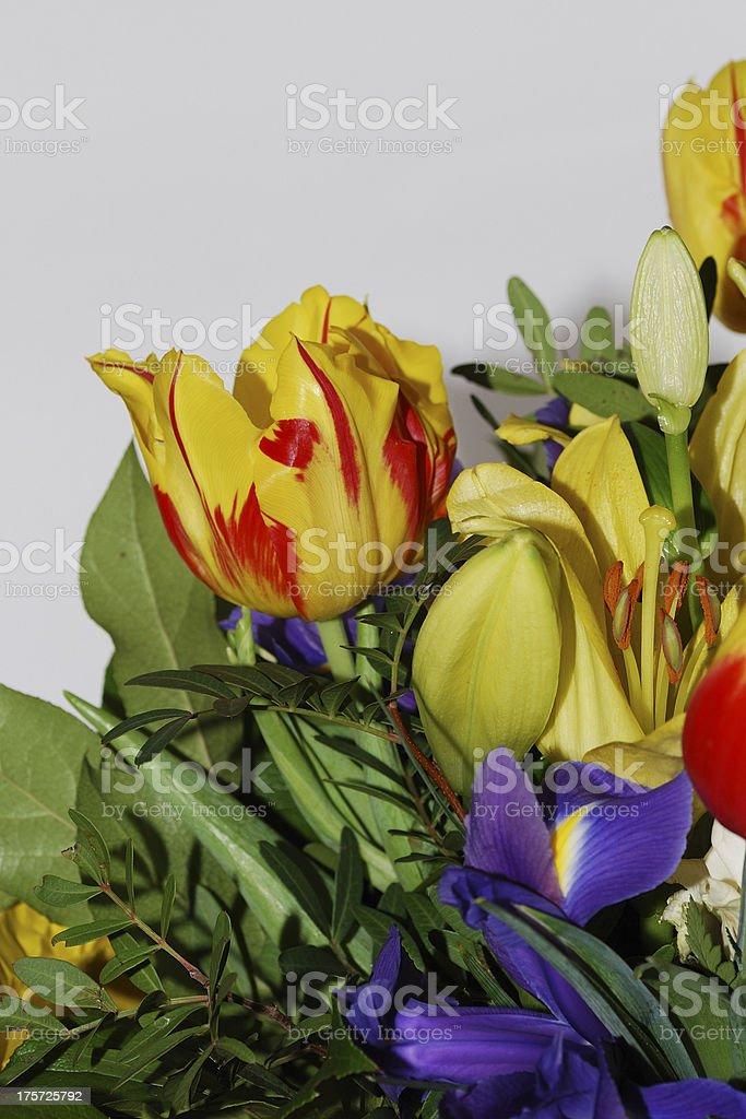 bouquet on white portrait royalty-free stock photo