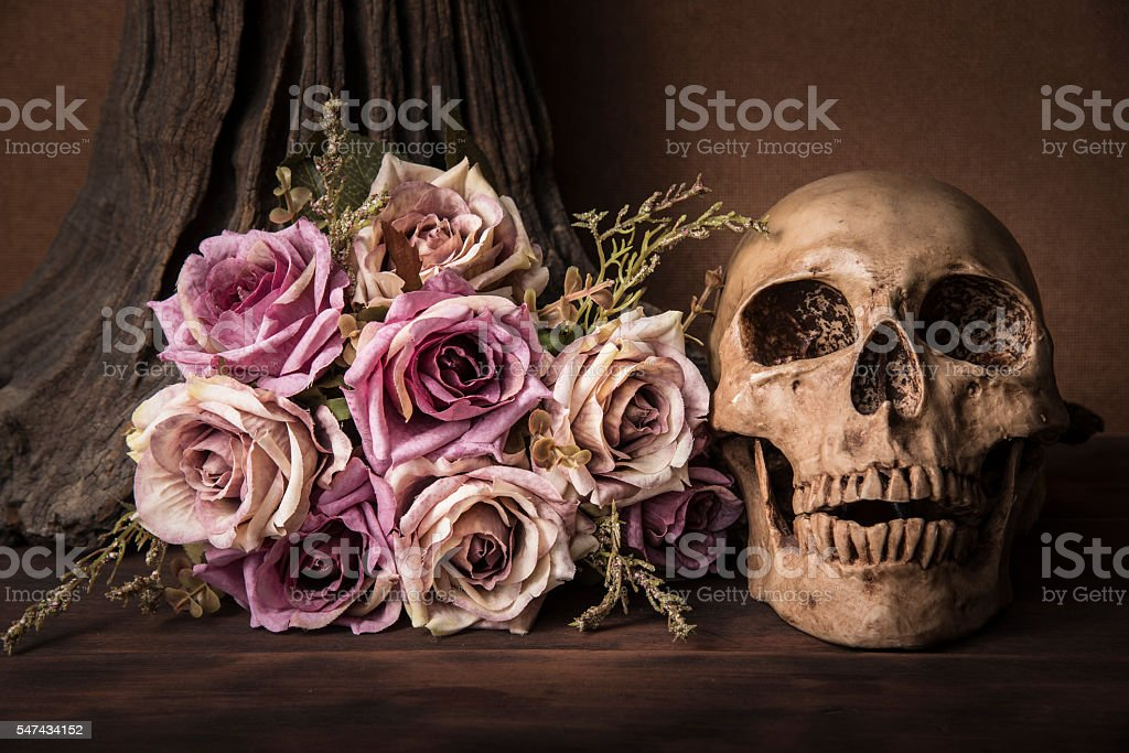 Bouquet purple roses with human skull stock photo