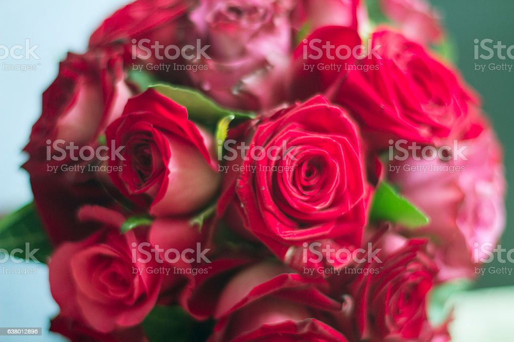 Bouquet red roses stock photo