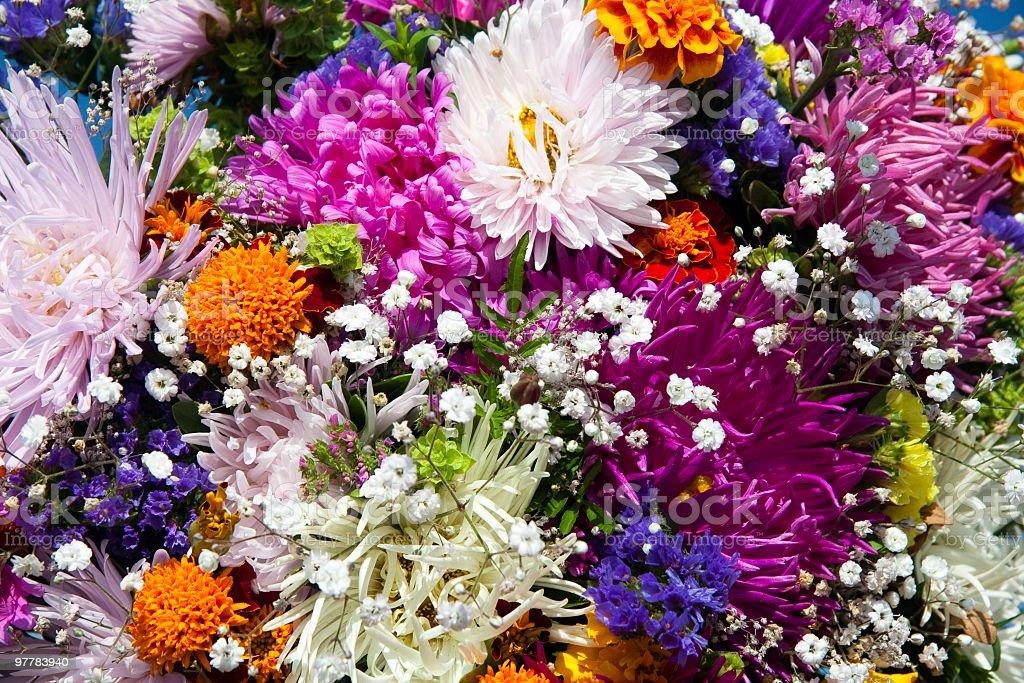bouquet wildflower stock photo