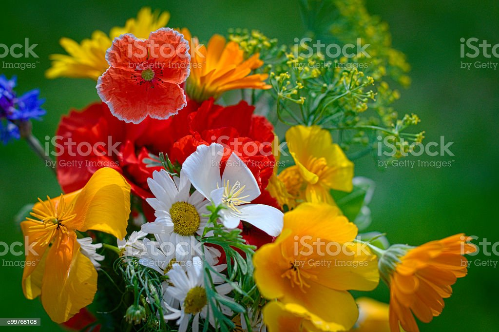 Bouquet with blossoming flowers stock photo