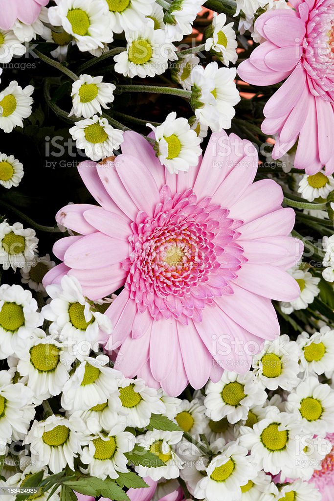 Bouquet with different flowers royalty-free stock photo