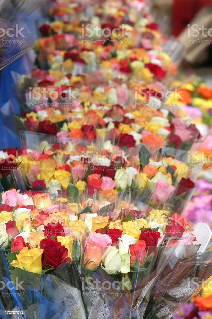 Bouquets of colorful roses royalty-free stock photo