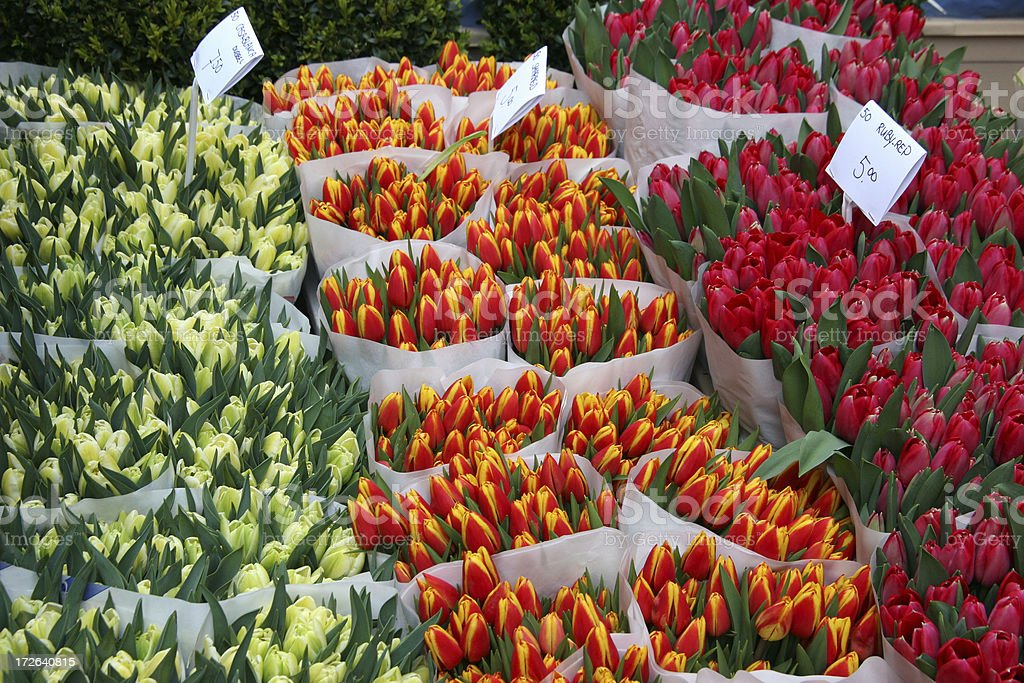 bouquets of colorful tulips royalty-free stock photo