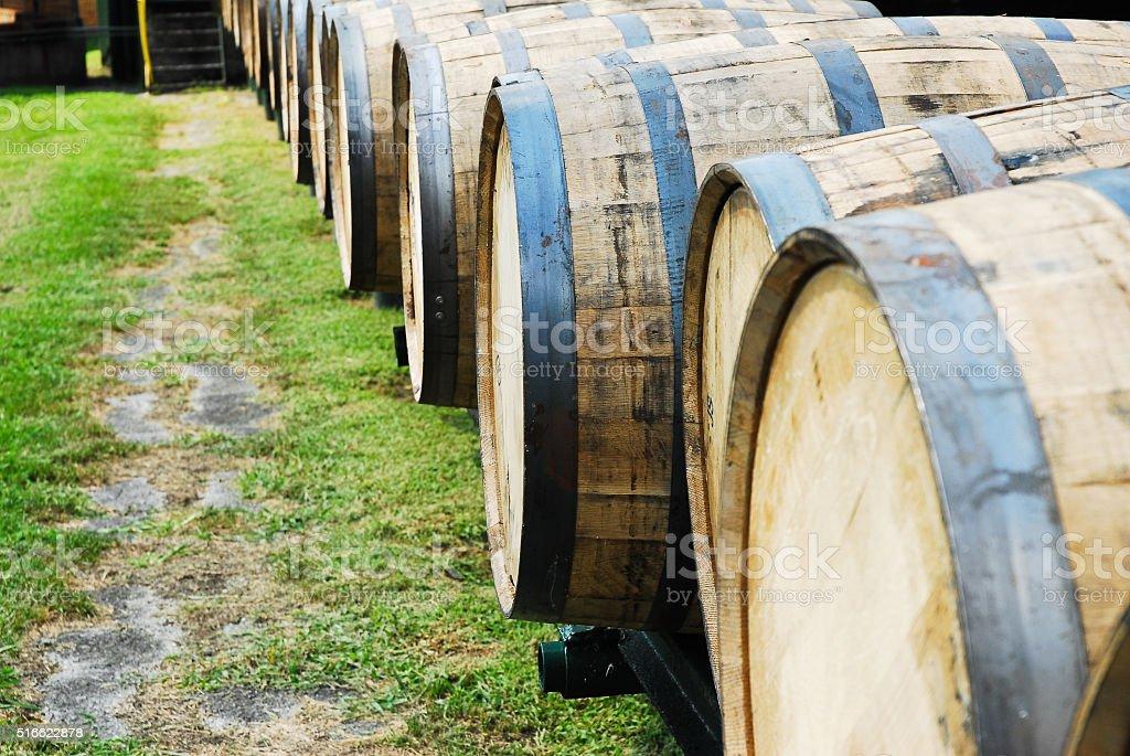 Bourbon Barrels stock photo