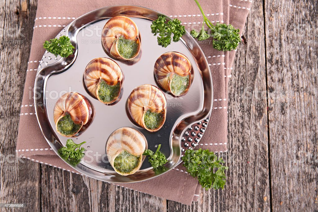 bourgogne escargot stock photo