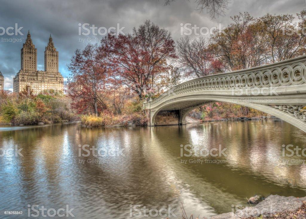 Bow bridge Central Park autumn stock photo
