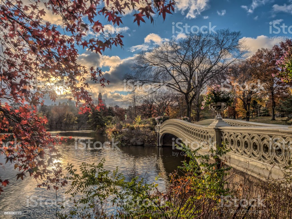 Bow bridge Central Park autumn stock photo