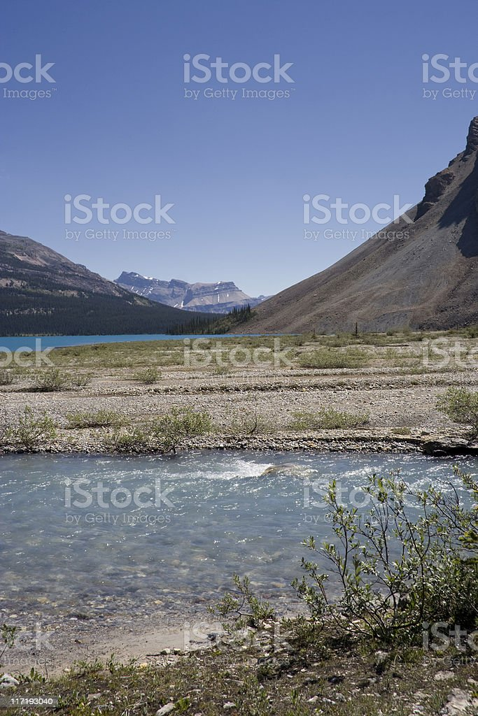bow lake and glacial water in the canadian rockies royalty-free stock photo