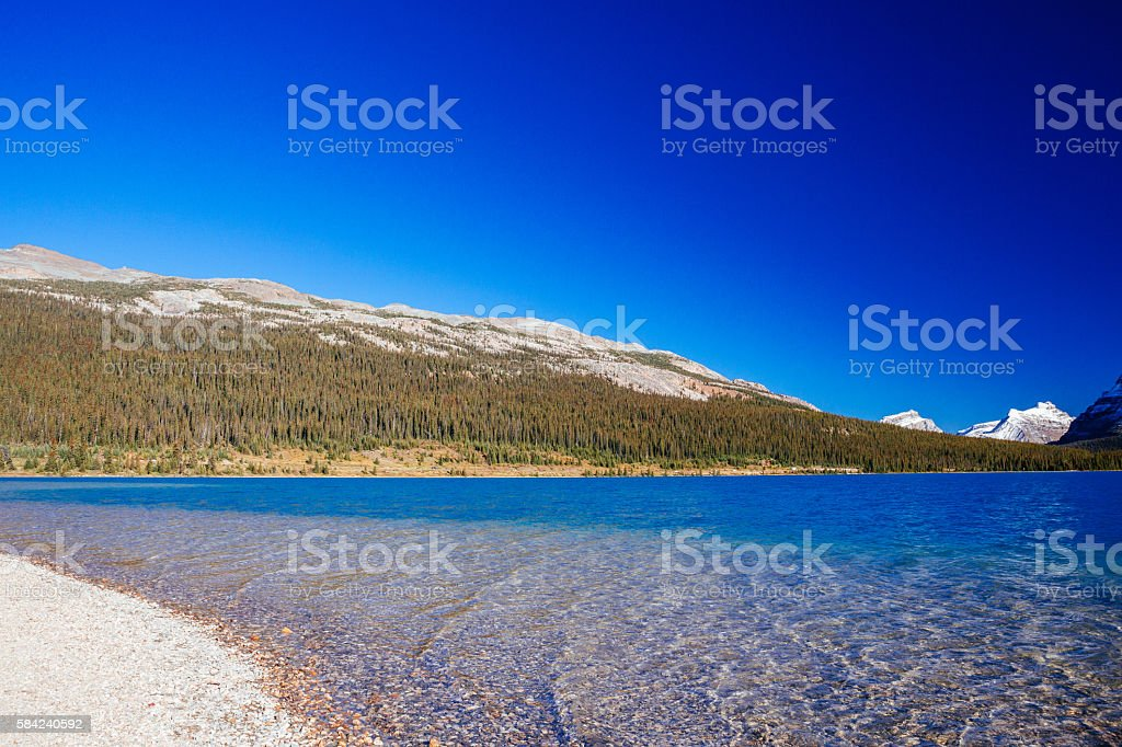 Bow Lake, Banff National Park, Alberta, Canada stock photo