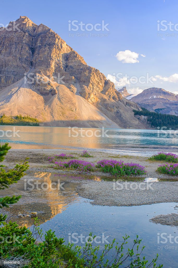 Bow Lake, Banff National Park and Jasper National Park, Canada stock photo